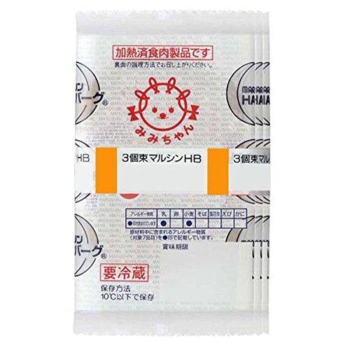 マルシンフーズ 3束ハンバーグ 10セット 【人気 おすすめ 】