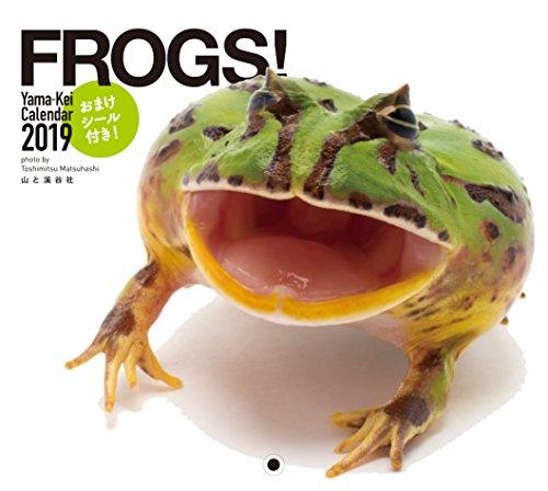カレンダー2019 FROGS! (ヤマケイカレンダー2019)
