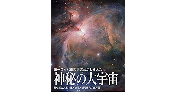 Amazon.co.jp: ヨーロッパ南天...