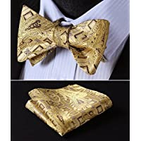 HISDERN Paisley Bow Ties for Men Luxury Floral Bowtie + Handkerchief Set Formal Tuxedo Self-Tied Bowties for Wedding Party Adjustable Size for Women and Boys