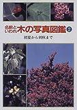 名前といわれ 木の写真図鑑〈2〉初夏から初秋まで