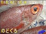 幻の超高級魚「のどぐろ」中4,5匹で1㎏