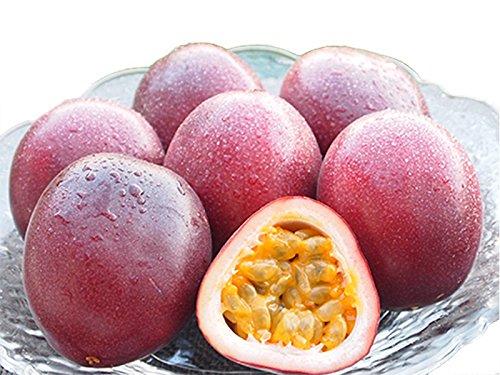 ぐるめライン 鹿児島県産 パッションフルーツ 1kg 12玉 産地直送 予約