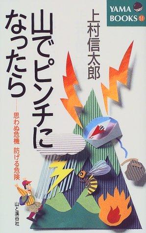 山でピンチになったら—思わぬ危機 防げる危険 (YAMA BOOKS)