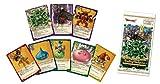 ドラゴンクエスト トレーディングカードゲーム ブースターパック~進化の秘法編~BOX (ブースター第2弾)