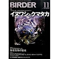 BIRDER (バーダー) 2014年11月号 イヌワシとクマタカ