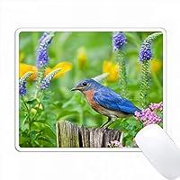 花鳥園のフェンスポストにあるEastern Bluebird、Marion Co. IL PC Mouse Pad パソコン マウスパッド