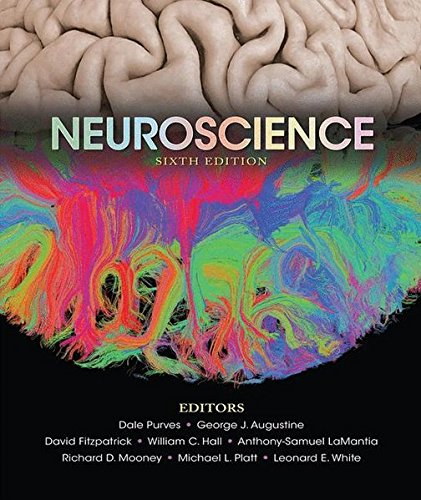 Download Neuroscience 1605353809