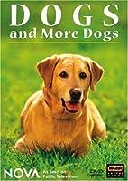 Nova: Dogs & More Dogs [DVD] [Import]