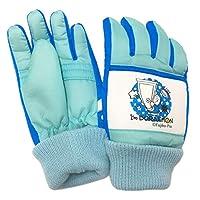 子供用 スキー手袋 ドラえもん I'm DPRAEMON 防寒 雪用手袋 雪遊び pz-fzt10(サックス56)