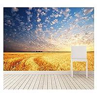 Mrlwy 壁画カスタム3D壁画フィールド風景空日の出と日没雲自然リビングルームソファテレビベッドルーム壁紙-120X100CM