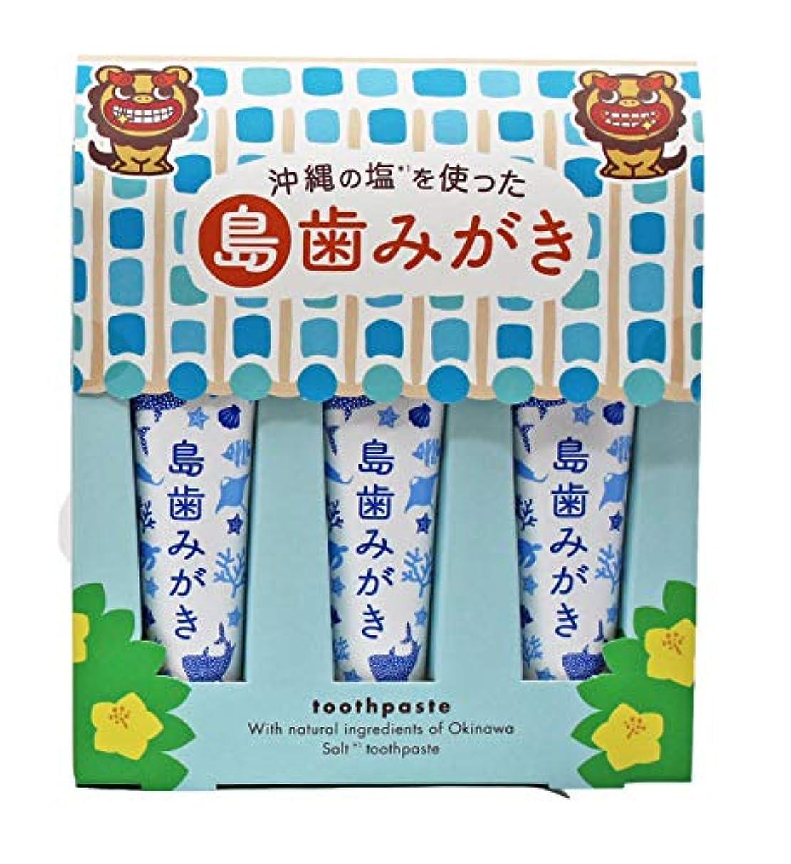 ご予約やめる翻訳沖縄の塩を使った島歯みがき (藍色) 15g×3本入り