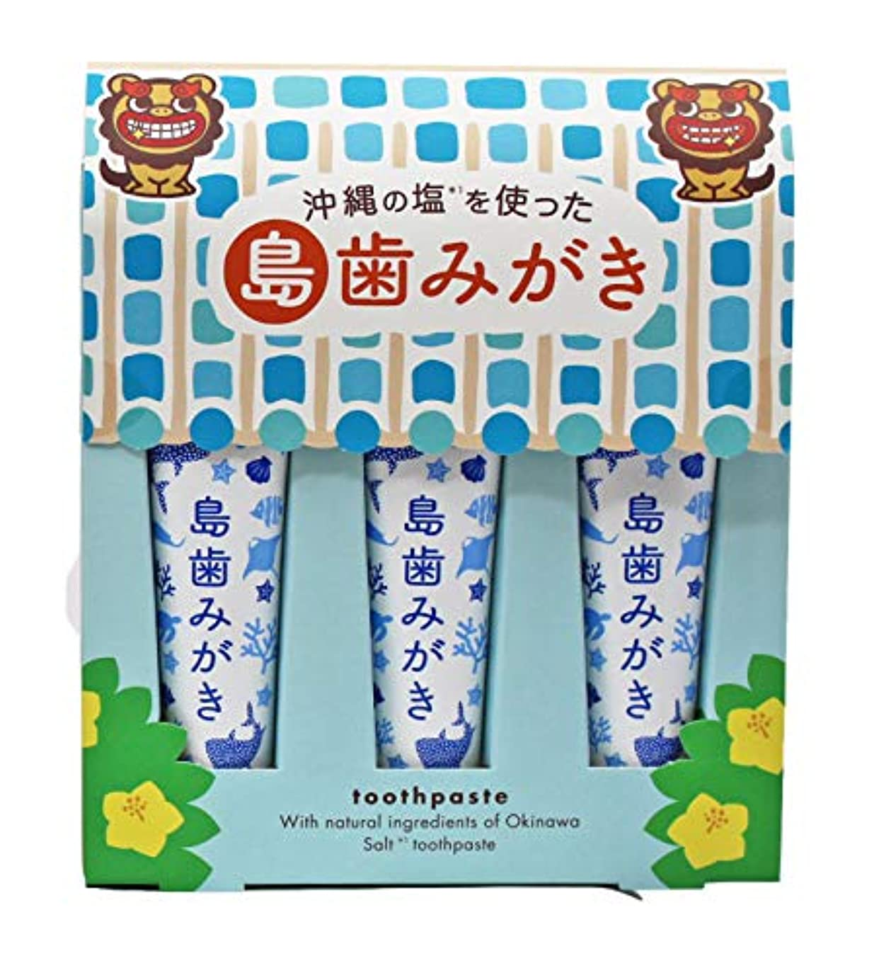 カスケード呼び出す学士沖縄の塩を使った島歯みがき (藍色) 15g×3本入り