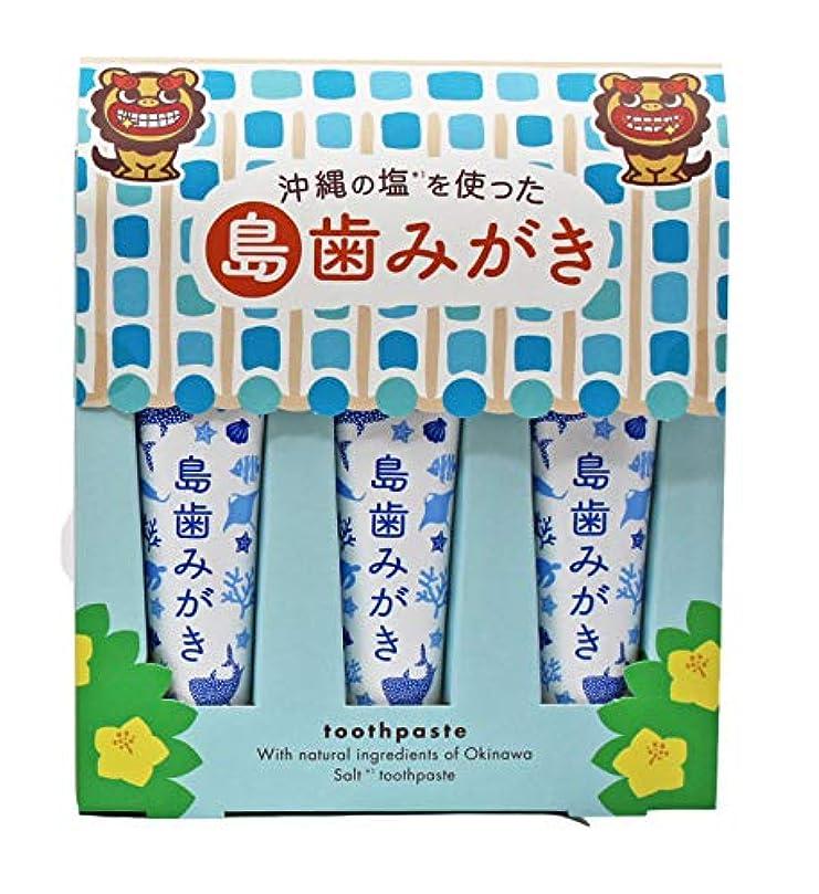 出版おもちゃ童謡沖縄の塩を使った島歯みがき (藍色) 15g×3本入り