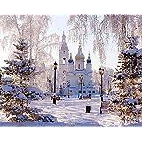 雪景色  diy by数字キット風景壁絵画ユニークなギフトペイント用数字によるホームアートいいえフレーム40×50センチ