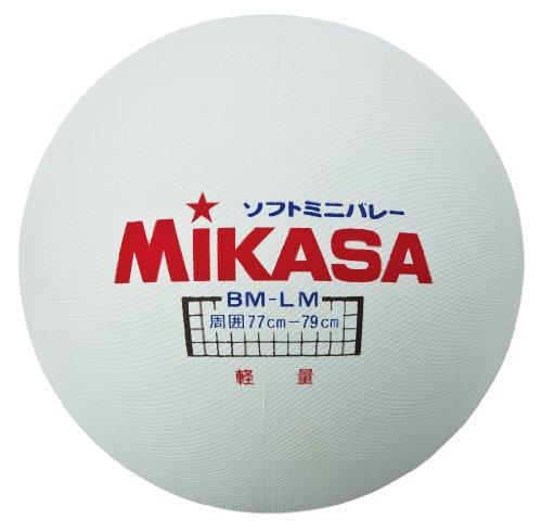 ミニソフトバレーボール BM-LM