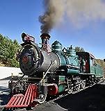 写真 | トゥイッツィー鉄道の狭いゲージの蒸気機関車 | ファインアート写真報告 36in x 36in H46771_3636_HSM1