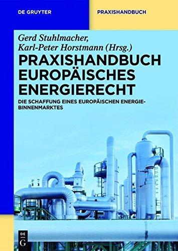 Praxishandbuch Europäisches Energierecht: Die Schaffung eines europäischen Energie-Binnenmarktes (De Gruyter Praxishandbuch)