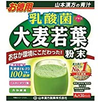 山本漢方 乳酸菌+大麦若葉粉末 4g×30包 ×10個セット