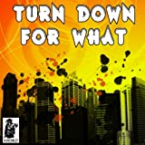 Turn Down For What (Originally Performed by DJ Snake & Lil Jon)