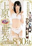 上原亜衣COMPLETE BOX4枚組830分 [DVD]