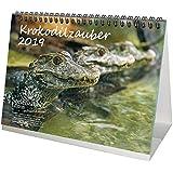 クロコダイルザウバー・DIN A5・プレミアム ティシュカレンダー/カレンダー 2019・クロコダイル・爬虫類・クロコダイル・エッチェン・シュリンゲン・アフリーカ・インディアン・アサイエン