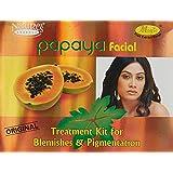 自然のエッセンスパパイヤフェイシャルキットシミ·色素沈着1キットNature's Essence Papaya Facial Kit Blemishes & Pigmentation 1 Kit