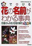 色でひける花の名前がわかる事典―花屋さんの花・花壇の草花450種 / 高橋 竜次 のシリーズ情報を見る
