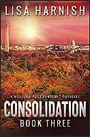 Consolidation: Book Three