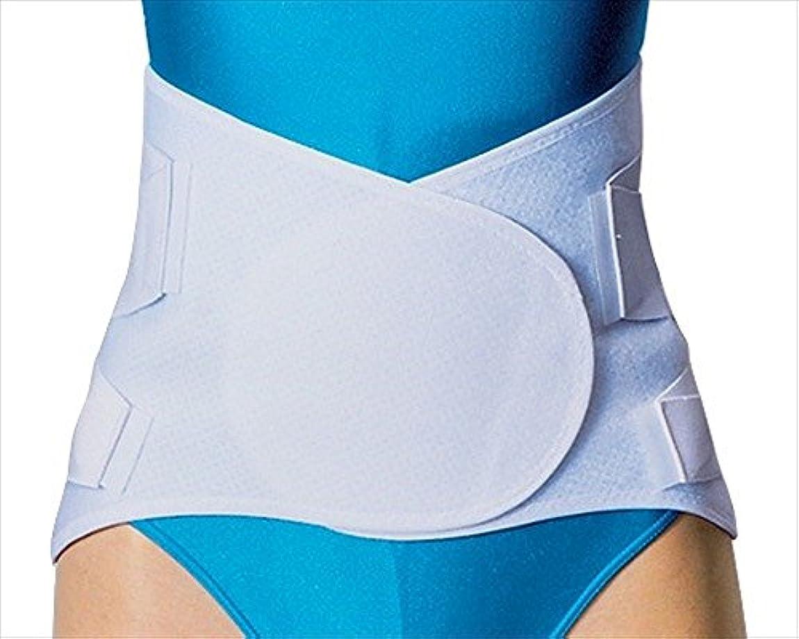 静脈徹底アソシエイト中山式 腰椎医学 コルセット ワイド Lサイズ 腰回り 80~100cm
