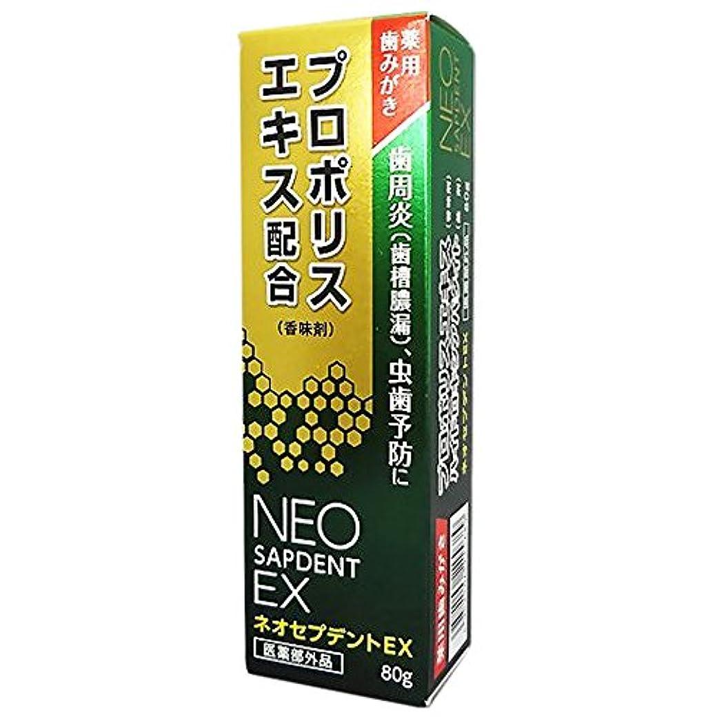 ひらめき定数夫婦森川健康堂 ネオセプデントEX 80g