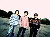 LOSTMAN GO TO BUDOUKAN【初回限定盤】 [DVD] 画像