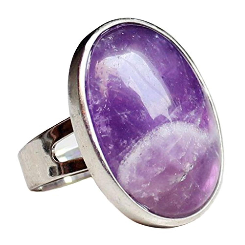SONONIA リング 手作り 贈り物 楕円形 芸術品 バンド ファセット付き 調節可能 指輪 約3×0.8cm 全9色 - 紫