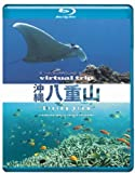virtual trip 沖縄八重山 diving view(D...[Blu-ray/ブルーレイ]