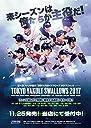 第4回 ファンが選ぶ「東京ヤクルトスワローズ2017」 トレーディングカード BOX商品 1BOX 12パック入り 全127種類