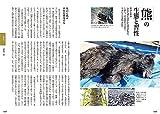 サバイバル猟師飯: 獲物を山で食べるための技術とレシピ 画像