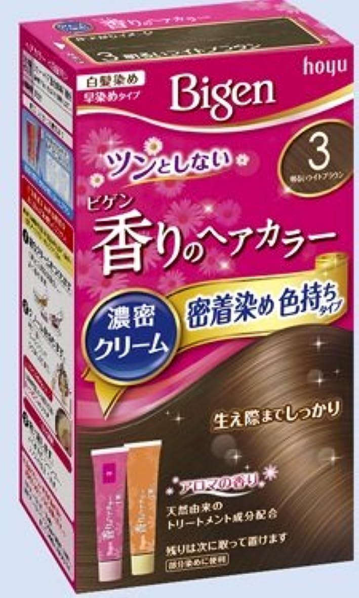 セッション雑多なフォーマットビゲン 香りのヘアカラー クリーム 3 明るいライトブラウン × 10個セット