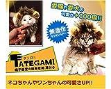 犬猫用ウィッグ たてがみ (耳付き) MI-TATEGAMI