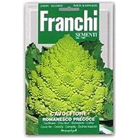 【FRANCHI社種子】【30/51】カリフラワー・ロマネスコ
