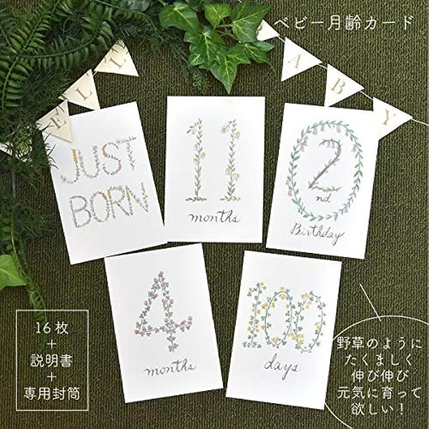 段落痛み落ち着く3歳まで使える!野草のベビーマンスリーカード ナチュラルな可愛い月齢カード