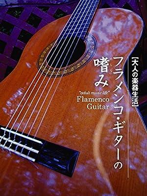 大人の楽器生活 フラメンコ・ギターの嗜み