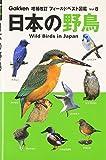 日本の野鳥 (フィールドベスト図鑑) 画像