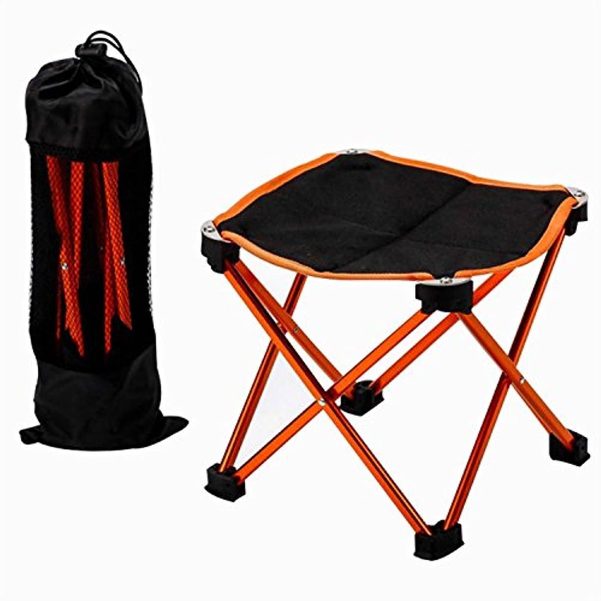 私たち観点のためLigangam アウトドア フィッシングチェア 釣り椅子 ビーチチェア 折りたたみ アルミ合金 超軽量 コンパクト チェア キャンプ 登山 釣り用 収納用袋付属 多色