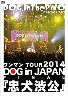 ワンマンTOUR 2014 DOG in JAPAN FINAL『忠犬渋公』 (通常盤) [DVD](在庫あり。)