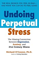 Undoing Perpetual Stress: The Missing Connection Between Depression, Anxiety and 21stCentury Illness