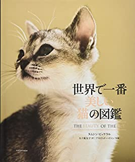 読書 旅 文 感想 リポート 猫
