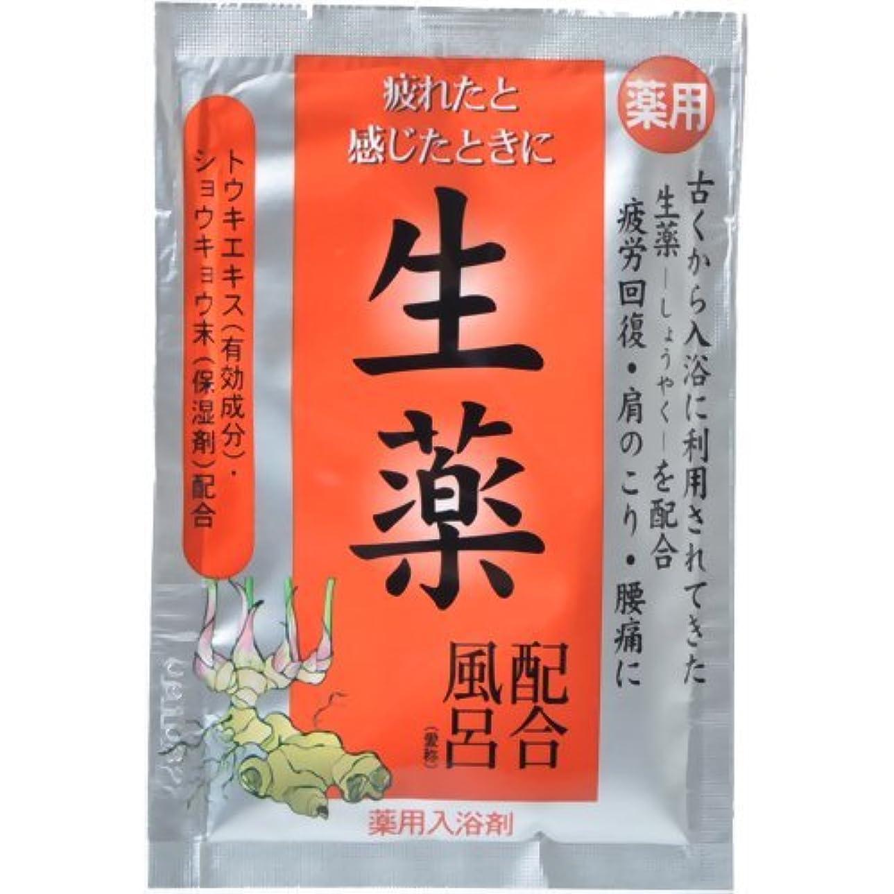 光沢車天井五州薬品 自然植物力 生薬配合風呂 25g入