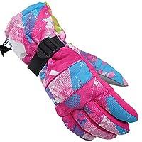 Lyonice スキー グローブ スノボー グローブ スキー 手袋 登山 手袋 防寒グローブ 防水 防寒 保温 通気性