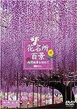 シンフォレストDVD 花名所百景/満開絶景を訪ねて 映像遺産・ジャパントリビュート 画像