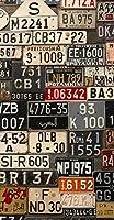 ポスター ウォールステッカー 長方形 シール式ステッカー 飾り 90×47cm Lsize 壁 インテリア おしゃれ 剥がせる wall sticker poster ユニーク ナンバー プレート カラフル 写真 008544